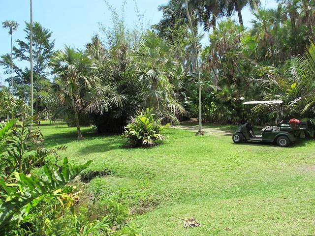 Fairchild Tropical Botanic Garden Flickr Photo Sharing
