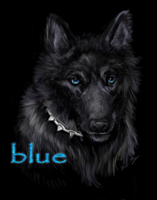 "Wolf's Rain Blue | Blue from the anime ""Wolf's Rain"" I drew ..."