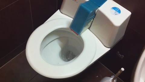 Self Cleaning Toilet Seat I Was Lucky Enough To