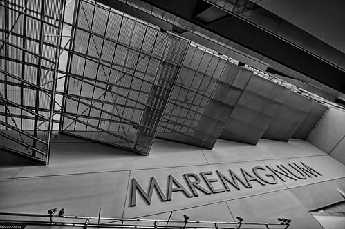 Maremagnum Ceiling in Black and White | by Glenn Shoemake