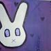 xo bunny