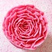 Pretty buttercream Flower