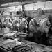 雞販 Poultry traders