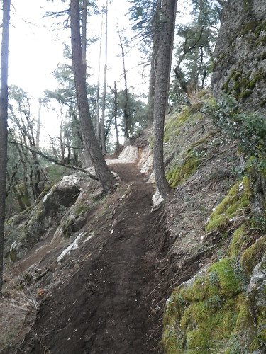 North Yuba River Trail, tread widening where the boardwalk once was | by Sierra Buttes Trail Stewardship