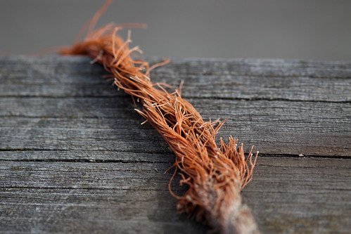 Frayed rope and wooden dock | by Tom Bech