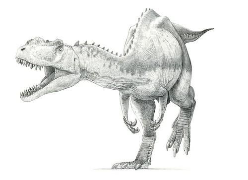 Yangchuanosaurus shangyouensis | Flickr - Photo Sharing! Yangchuanosaurus Coloring Page