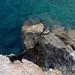 Mountain goat - Sifnos, Greece