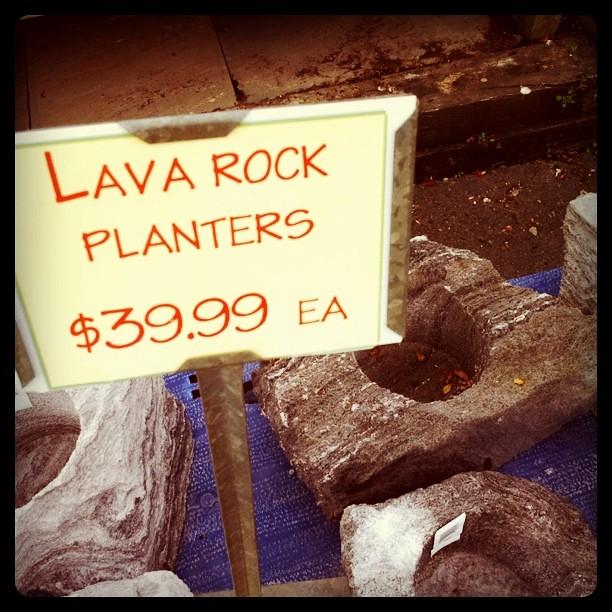 Lava Rock Planters As Seen At The Burke Garden Center C