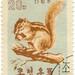 North Korea postage stamp: chipmunk