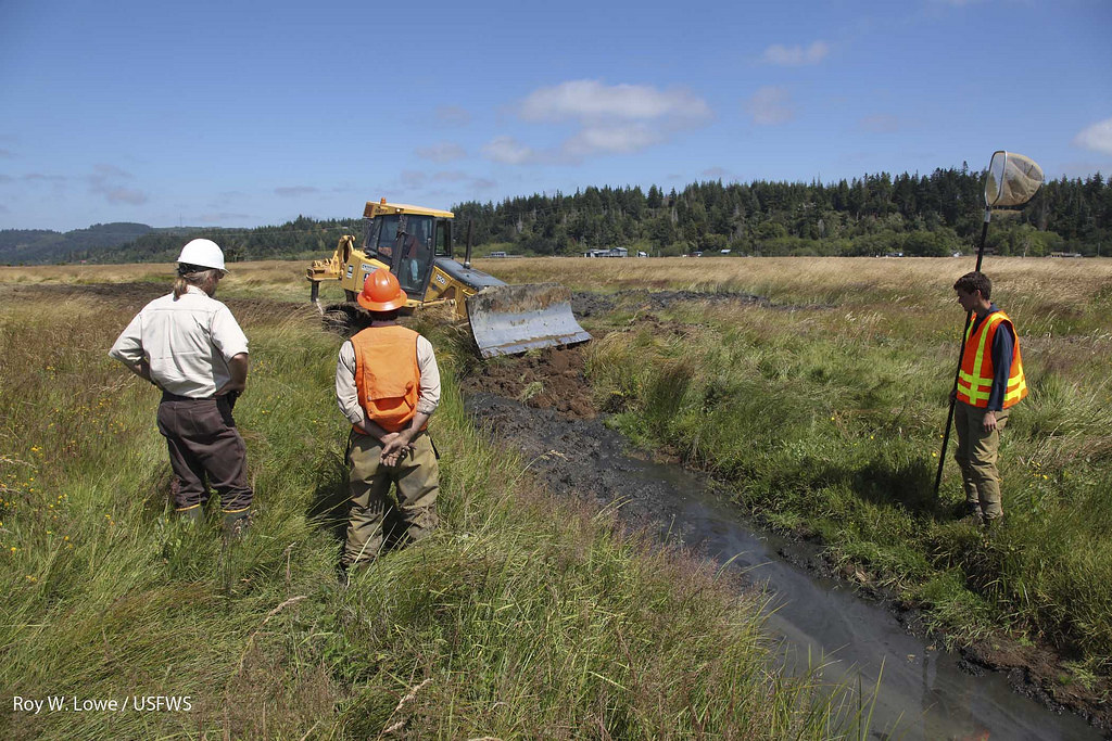 Ditch filling u s fish and wildlife service and oregon for Oregon department of fish and wildlife jobs
