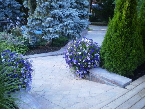 Curb Appeal | by Rainbow Landscaping