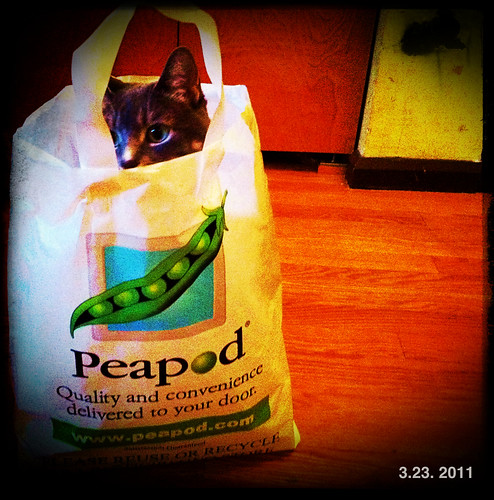 A fan of Peapod | by swanksalot