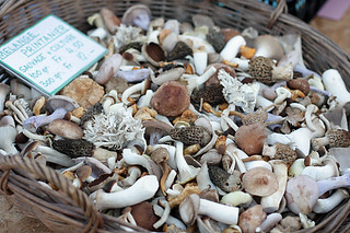 mixed mushrooms | by David Lebovitz