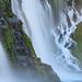 Roaring Seep - Burney Falls, California