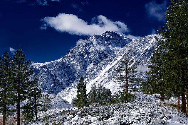 Sierra Nevada Mountain...