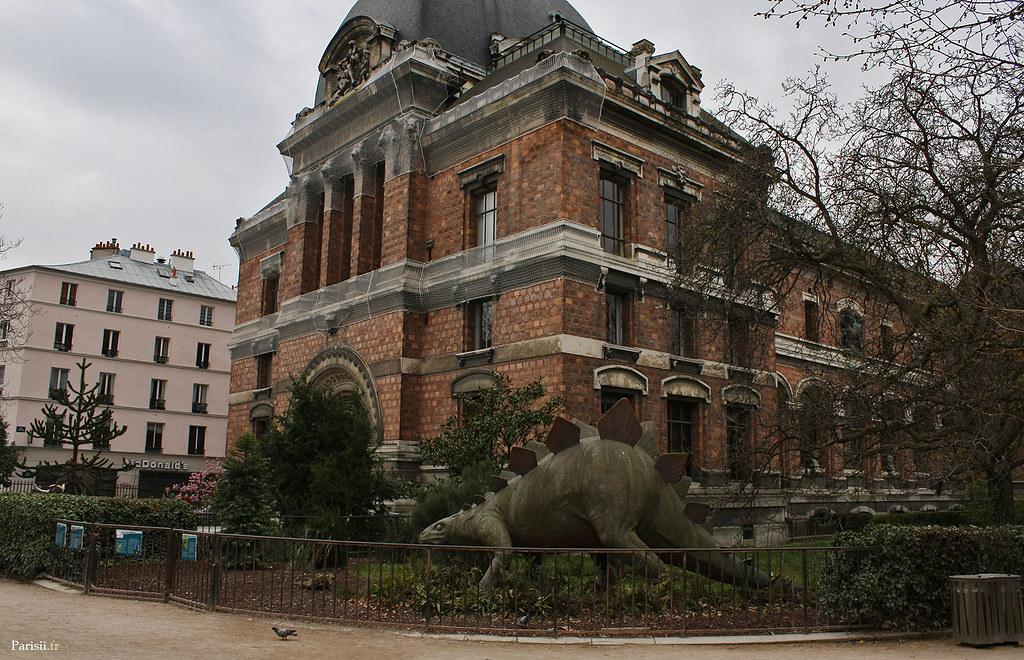 Stégosaure devant l'entrée de la Galerie de paléontologie