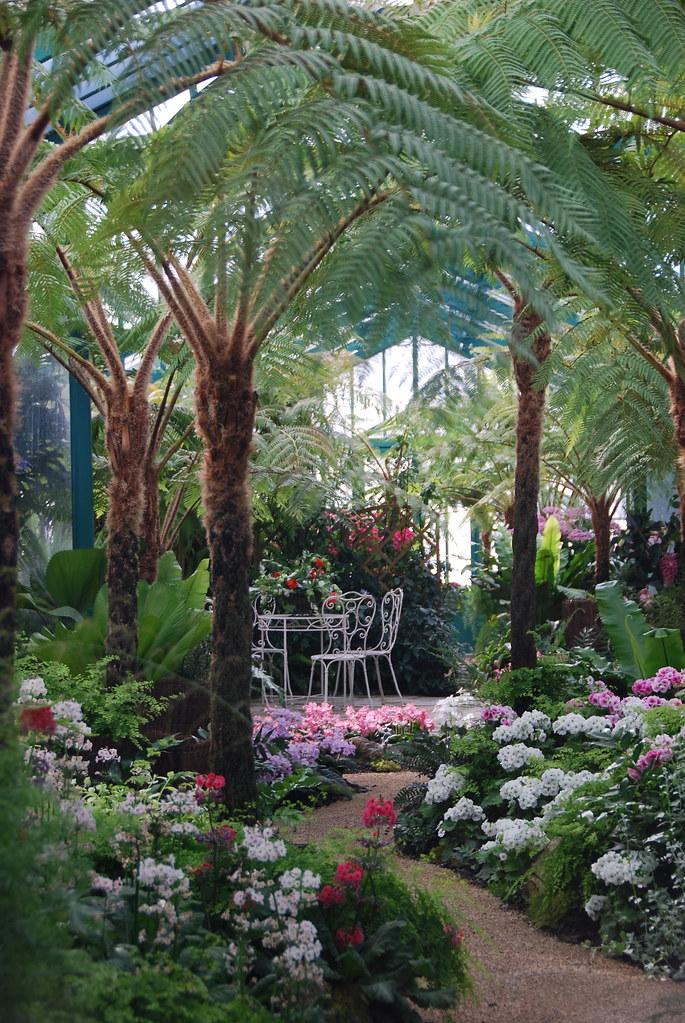 Le Petit Jardin Tropical Serres Royales De Laken Bruxell