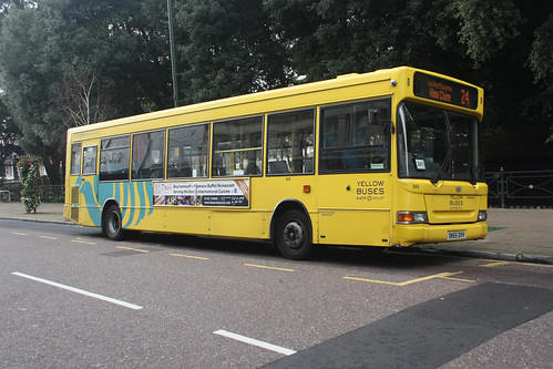 Yellow Buses 504 SN55DVH