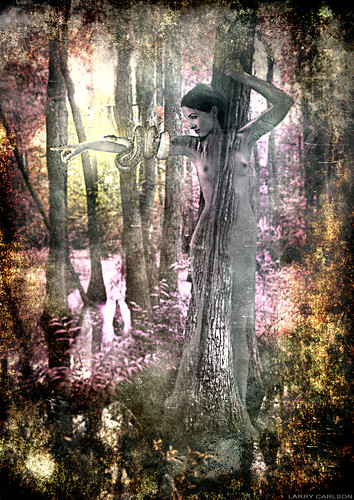 LARRY CARLSON, Swamp Goddess 4, digital photography, 2010. | by LARRY  CARLSON