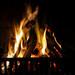 warm your bones beside the fire