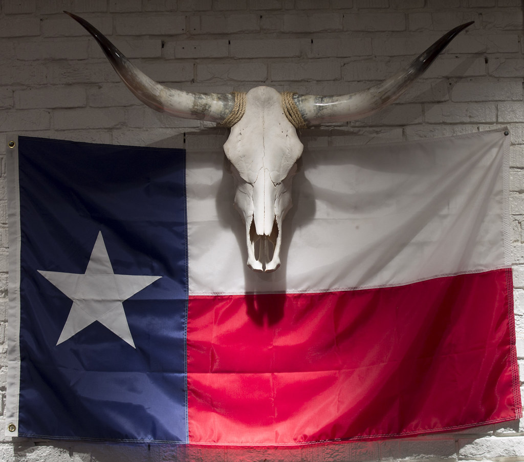 Texas Flag And Longhorn Saw This In A Tattoo Shop While