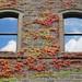 2 stone windows
