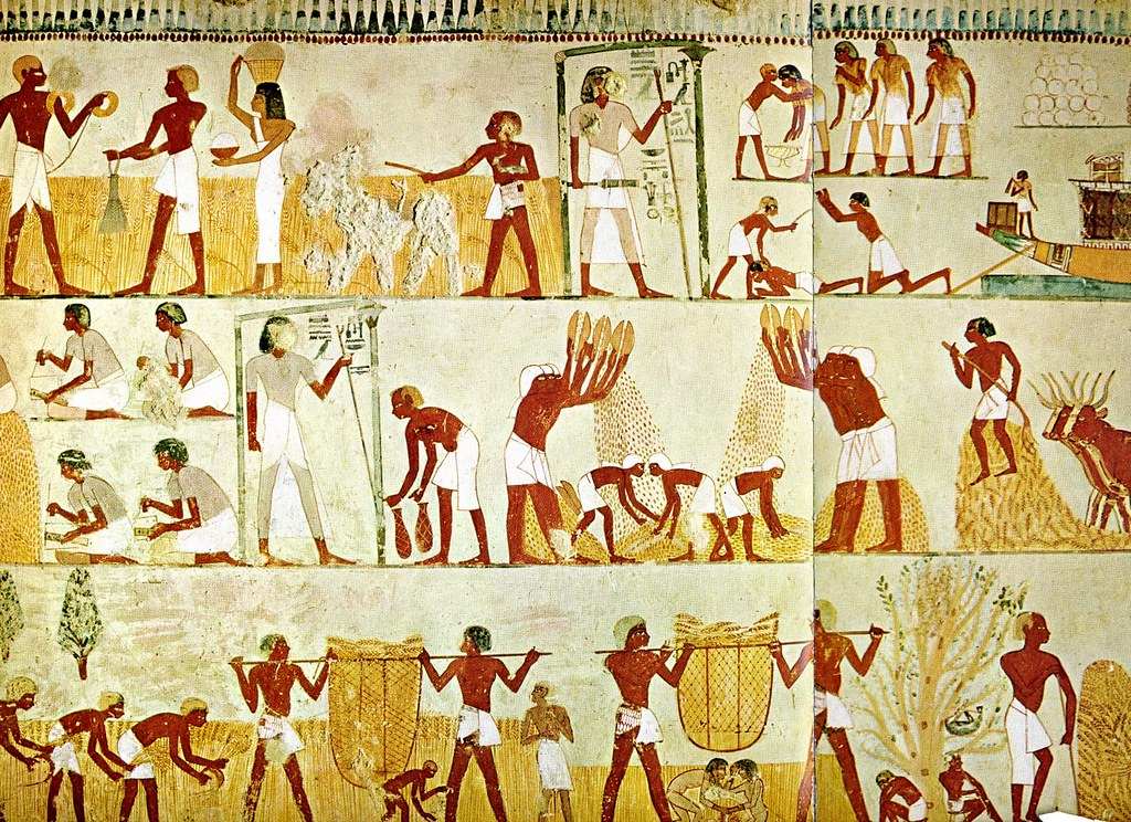 Egypt field work tomb of menna 18th dynasty b fitz for Dynasty mural works
