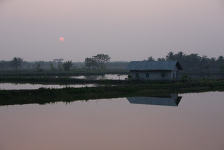 Fading light over pond aquaculture, Khulna, Bangladesh. Photo by Mike Lusmore/Duckrabbit, 2012. | by WorldFish