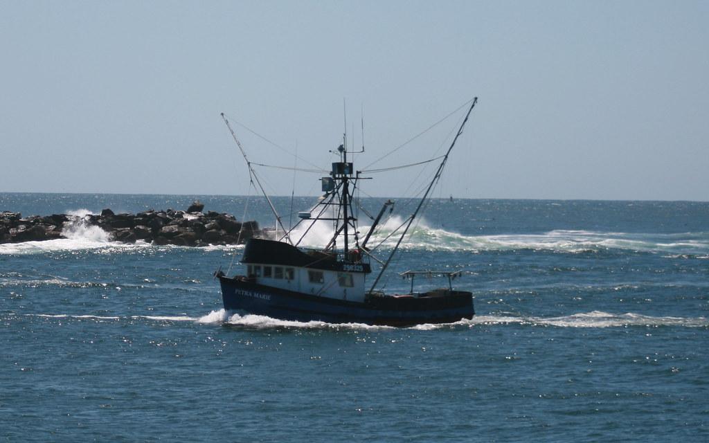 Petra marie entering tillamook bay a commercial fishing for Tillamook bay fishing