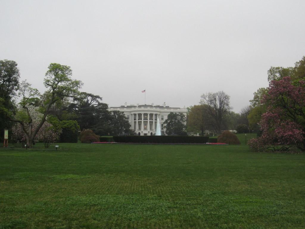 the white house back yard lawn in washington dc usa
