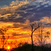 April Sunrise 5 by Jim Crotty