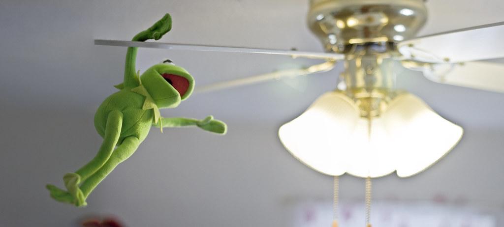 Kermit Swings On The Ceiling Fan View On Black Serve