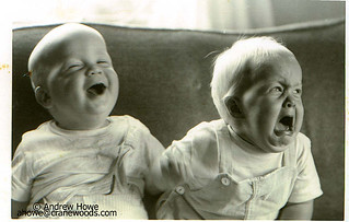 Laughing and crying babies (at same time) picture | by Cranewoods.com