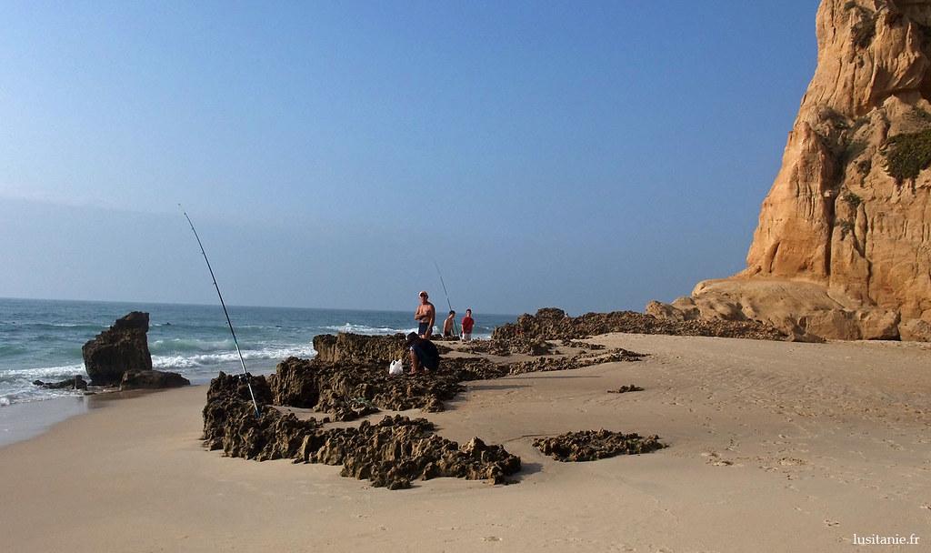 Les cannes-à-pêche sont plantées dans les trous des rochers