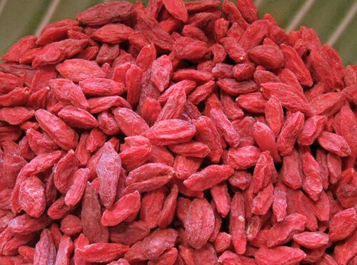 Goji Berries - SurvivalBros.com Superfood | by SurvivalBros.com