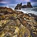 Cape Foulwind - Westport