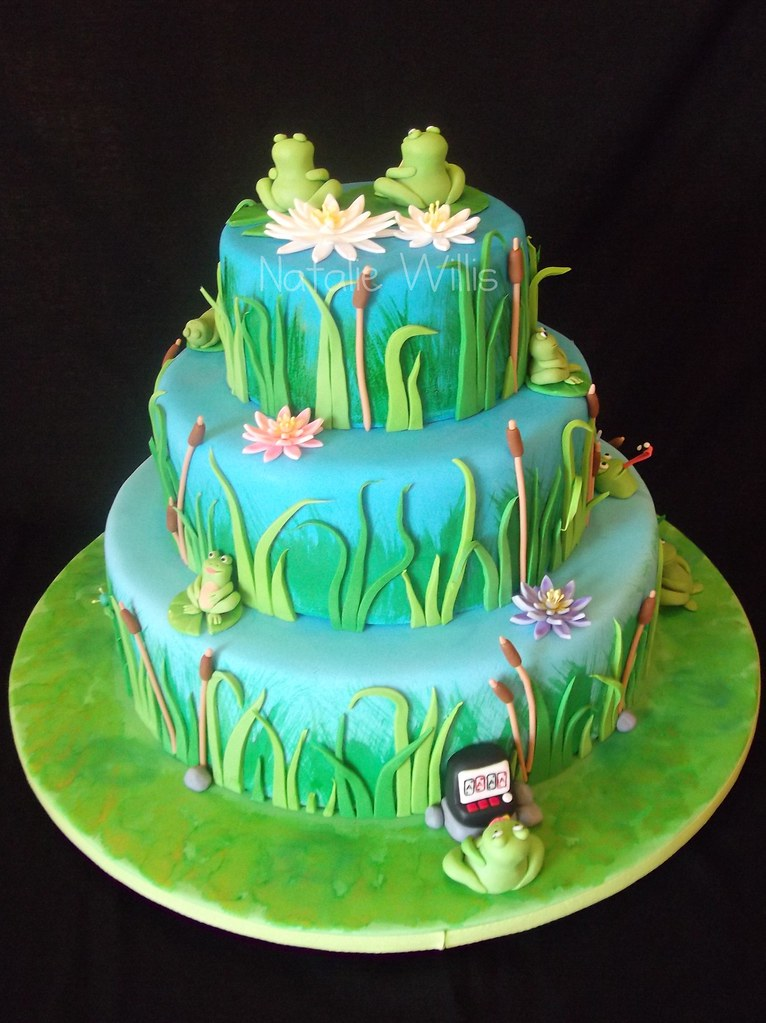 Frog Cake | Back view | Natalie | Flickr