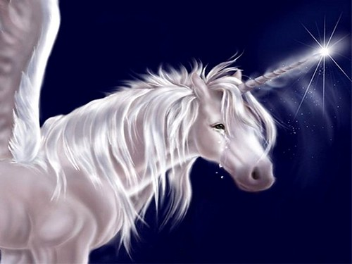 white unicorn 2 | Flickr - Photo Sharing!
