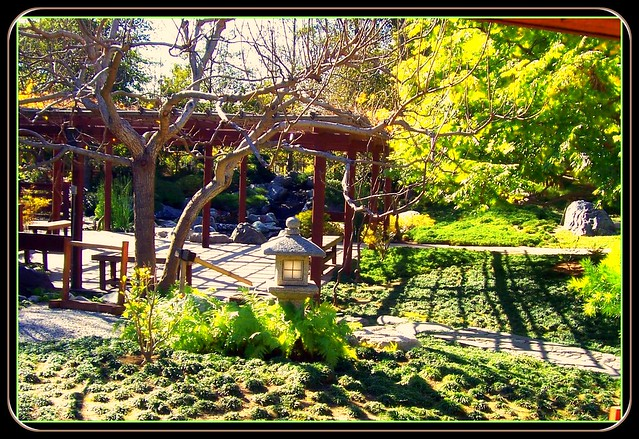 Japanese Garden Balboa Park San Diego Ca Flickr