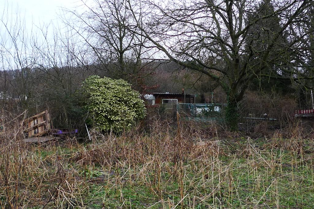 Verwilderter Garten 1060935 Spaziergang Bei Nieder Eschbac Flickr