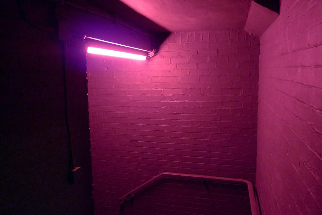 Light Blue Room Ideas