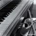 Piano and Viola
