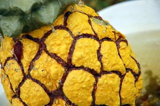 Pineapple | by Steve Snodgrass