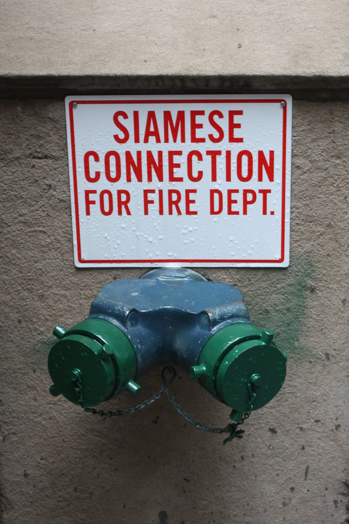 Siamese Connection New York United States See Flickr