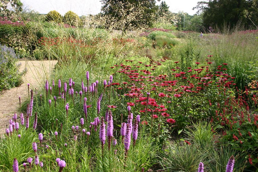 Piet Oudolf Planting Design At Trentham Estate