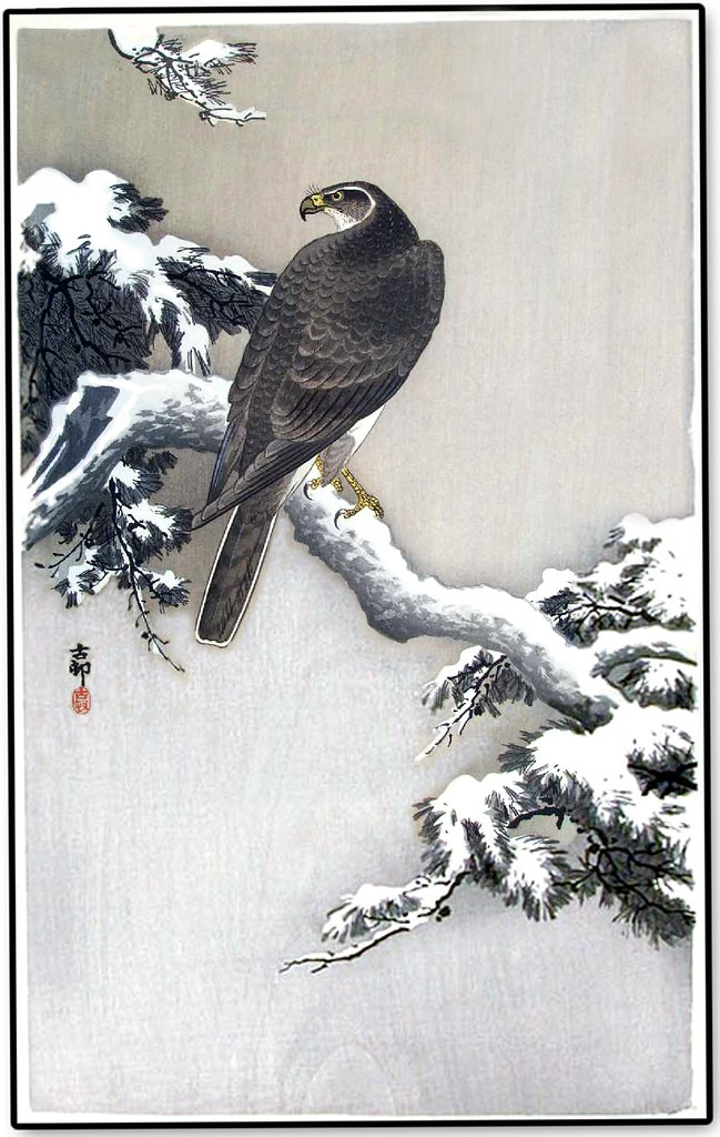 Quot Goshawk On A Snow Covered Pine Quot Ca1930 S By Koson Ohara
