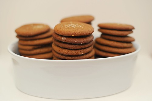 joe froggers - ginger rum molasses cookies | by sassyradish
