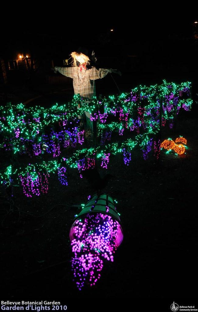Lr 0752 garden d 39 lights at the bellevue botanical garden flickr for Bellevue botanical garden lights