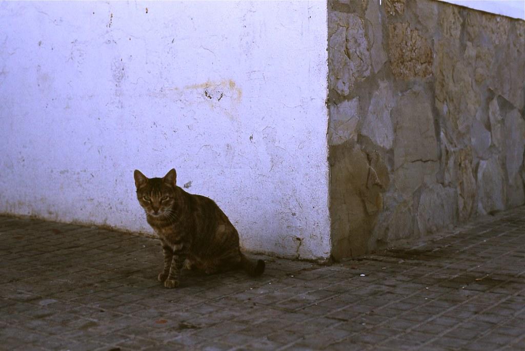Zahara De Los Atunes Hoteles