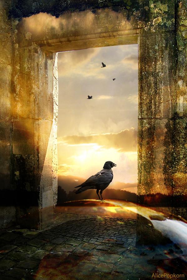 door to freedom | Awakening is a journey, it is not a goal ...